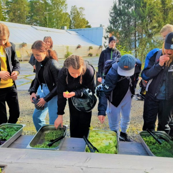 Tastings at the Botania -garden: Students of Joensuu growing food.  A food and cultivation education went into action when students of Joensuu planted a food garden at the Botania botanical garden. The harvest event was held on August 27th. The planting was made at the end of May by the students from Pielisjoki and Nepenmäki secondary schools and Itä-Suomen primary school.